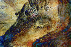 Detail of sleeping unicorn head, ornamental drawing Stock Images