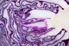 Detail of a sliced red cabbage Royalty Free Stock Images
