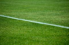 Detail of soccer line. Close up view of football pitch. Detail of soccer line Stock Photo