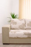 Detail Sofa Stock Photography