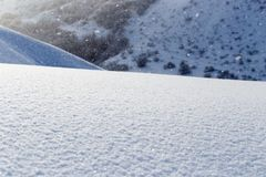 Detail of softly falling snowflakes. Stock Photo