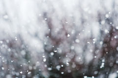 Detail of softly falling snowflakes. Royalty Free Stock Images
