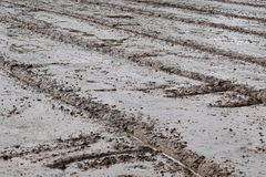 Soil mud in rice field prepare for plant rice in agriculture. Detail soil mud in rice field prepare for plant rice in agriculture Stock Photography