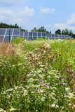 Detail of the Solar Power Station on the Meadow Royalty Free Stock Photography