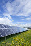 Detail of the Solar Power Station on the spring flowering Meadow Stock Image
