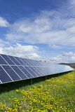 Detail of the Solar Power Station on the spring flowering Meadow Royalty Free Stock Images
