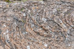 Detail of solidified lava in Iceland.  stock image