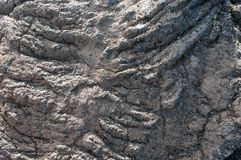 Detail of solidified lava in the Krafla volcanic system in Iceland.  royalty free stock photos