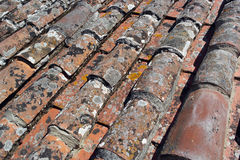 Detail of some roof tiles Stock Photography
