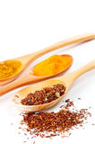 Detail of spices in the spoons Stock Images