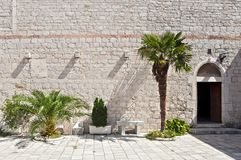 Detail of st Francis` monastery courtyard in Åibenik. Two palm trees in the front of medieval, stone built wall with ornate stonework around entrance door of royalty free stock photo
