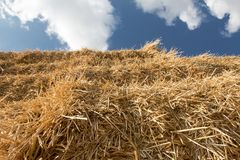 Detail stack straw Royalty Free Stock Photography