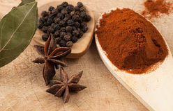 Detail of star anise and other spices Stock Photography