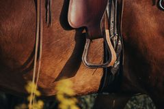 A detail of a stirrup on a western leather saddle. A stirrup on a western leather saddle on a horse in the field royalty free stock photos