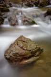 Detail of stone in brook Royalty Free Stock Photos