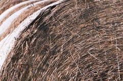 Detail on straw bales Stock Image