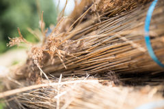 Detail of straw craftmanship in Holland. Straw craftmanship in Holland detail stock photo