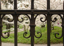 Detail of street iron fence Royalty Free Stock Image