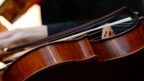 Detail of string quartet concert. Concert of violins viola and violoncello stock footage