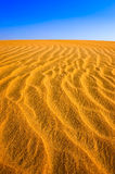 Detail of structured desert sand dune Royalty Free Stock Image