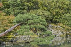 Detail Of The Tenryuji Temple Zen Garden At Arashiyama Kyoto Japan royalty free stock photos