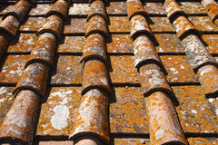 Detail of terracotta roof tiles Royalty Free Stock Photo