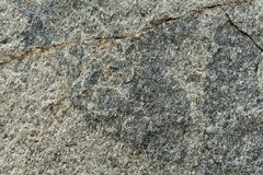 Detail texture of stone seamless background Stock Images
