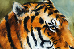 Detail tiger head on a soft toned abstract background. Tiger head on a soft toned abstract background royalty free illustration