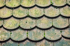 Detail of tiled roof Royalty Free Stock Image