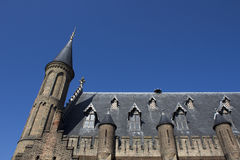 Detail & tower Dutch 'Binnenhof' Royalty Free Stock Images