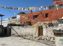 Detail of traditional Tibetan house and prayer flags Royalty Free Stock Photos