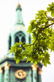 Detail of Tree and Clock Tower Royalty Free Stock Photography
