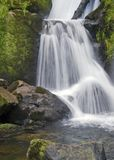 Detail of the Triberg Waterfalls royalty free stock images