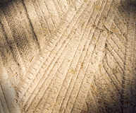 Detail of tyre tracks in sand Royalty Free Stock Image