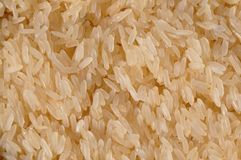 Washed rice. Detail of uncooked and washed rice Royalty Free Stock Photography