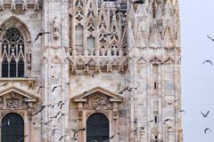 Detail of upper section of the Duomo di Milano with flying birds. Duomo di Milano detail of upper windows and flying pigeons from the Piazza del Duomo in Milan Royalty Free Stock Photos