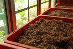 Detail van bulk de thee oranje pekoe van Ceylon bladeren die droog zijn stock afbeeldingen