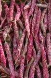 Detail van de bonen van 'Borlotti' in outoormarkt Stock Foto