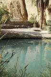 Detail van de oase Royalty-vrije Stock Foto