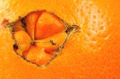 Detail van de schil van een sinaasappel royalty-vrije stock foto