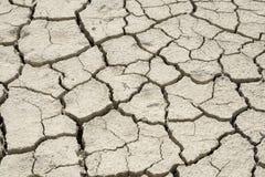 Detail van droge gebarsten grondtextuur Stock Afbeeldingen
