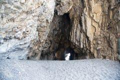 Detail van een hol langs de kust stock foto's