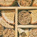 Detail van een insectenhotel royalty-vrije stock fotografie