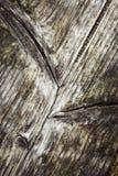 Detail van een oude doorstane houten raad Royalty-vrije Stock Fotografie