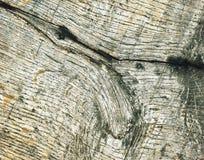 Detail van een oude houten raad Royalty-vrije Stock Afbeelding