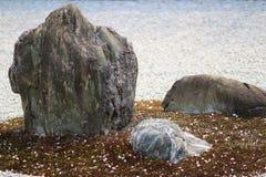 Detail van een rotstuin bij de tempel Ryoan -ryoan-ji in Kyoto, Japan Stock Foto's