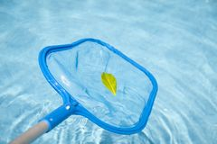 Detail van een Schuimspaan van de Pool Royalty-vrije Stock Afbeelding