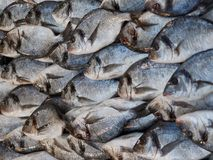 Detail van een stapel die van vissen bij de vissenmarkt worden verkocht met op een ordelijke manier Stock Foto's