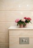 Het detail van het toilet royalty-vrije stock afbeeldingen