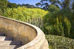 Detail van een tropische tuin Royalty-vrije Stock Foto's